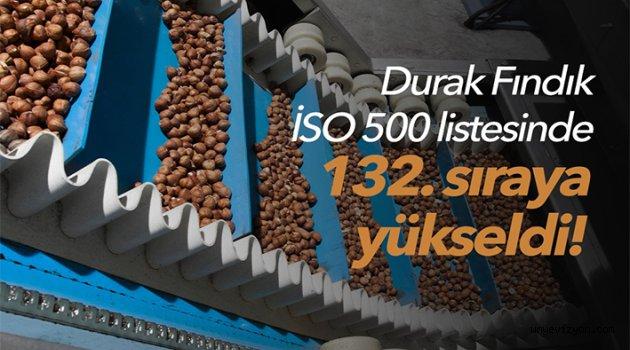 DURAK FINDIK İLK 500'TE..