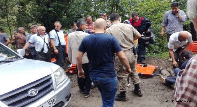 Fındık İşçilerini Taşıyan Kamyonet Şarampole Yuvarlandı