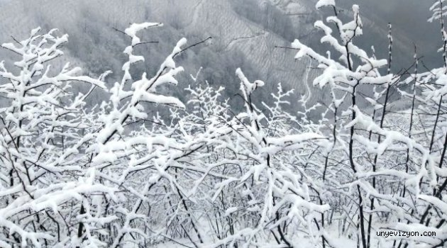 Kar Hazırlıksız Yakaladı