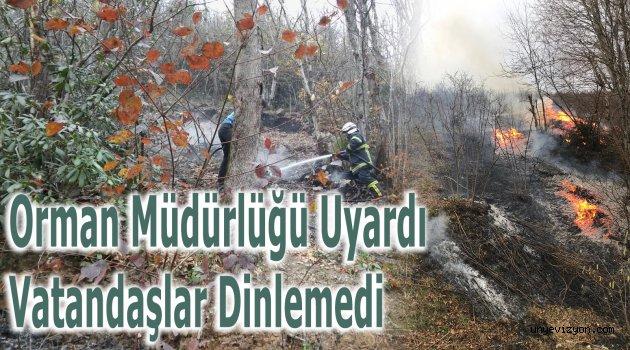 Orman Müdürlüğü Uyardı Vatandaşlar Dinlemedi