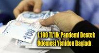 1.100 TL'lik Pandemi Destek Ödemesi Yeniden Başladı