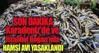 Karadeniz'de ve İstanbul Boğazı'nda hamsi avı yasaklandı