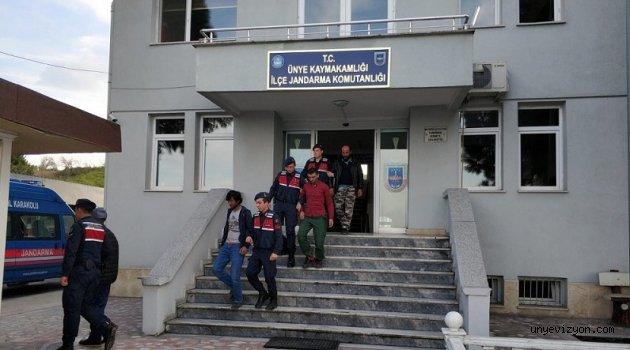 Ünye'de Kaçak Göçmen Operasyonunda 3 Gözaltı